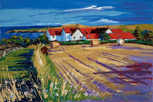 Afternoon Shadows_ St Abbs_Vill_11894.jpg